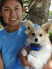 E-collar bark collars are available at Fremont dog training services